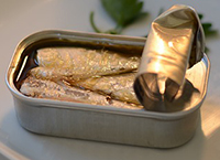 eating canned sardines in pregnancy