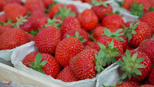 can i eat strawberry in pregnancy