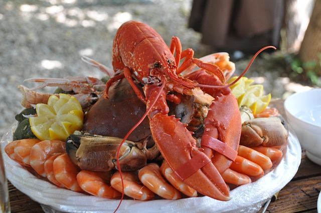 can i eat lobster in pregnancy