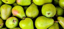 pears in pregnancy