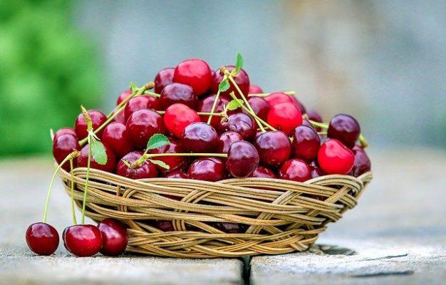 eating cherries during pregnancy